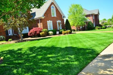 Lawn Maintenance & Installation